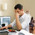 Work-at-Home Businesses – Know the Common Scams